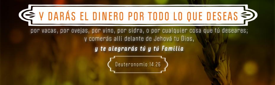 Banner Deuteronomio 14-26_00000